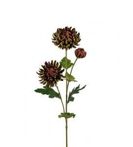 Chrysanthemum - Grön - 60 cm - www.frokenfraken.se