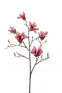 Magnolia - Rosa - 100 cm - www.frokenfraken.se