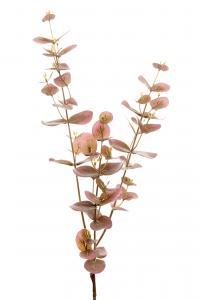 Eucalyptus - Lila - 70 cm - www.frokenfraken.se