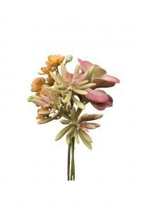 Succulent bukett - Rosa - 18 cm - www.frokenfraken.se