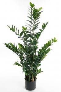 Zamifolia - Grön - 130 cm - www.frokenfraken.se