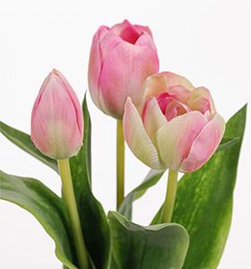 Mr Plant Tulpaner - 3 st - Rosa - 36cm